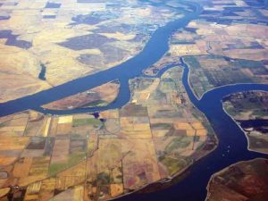 Sacramento_River_Delta,_California