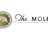 The Moles Announce 2020 Award Winners